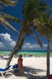 Il Messico sul toma della spiaggia sotto la palma Fotografie Stock Libere da Diritti