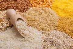Il mestolo ha riempito di riso sui precedenti dei mucchi dei cereali Immagine Stock Libera da Diritti