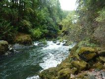 Il mezzo cade sul fiume di Deschutes fotografia stock libera da diritti