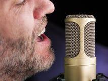 Il microfono dorato fotografia stock