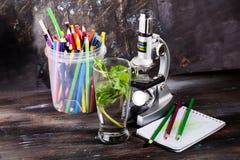 Il microscopio dei bambini in tavola di natura morta va, pianta, fogliame, la biologia, le matite, taccuino Immagine Stock