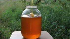 Il miele fresco è versato in una nave stock footage