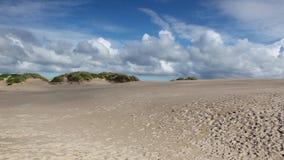 Il miglio di Rabjerg è una duna costiera di migrazione fra Skagen e Frederikshavn, Danimarca archivi video