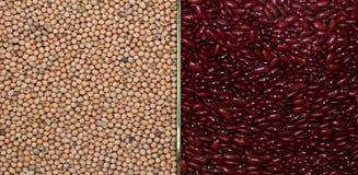 Il miglio e fagiolo rosso Immagine Stock