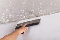 Il miglioramento della Camera dal lavoratore mette lo strato di finitura dello stucco su Th Immagine Stock