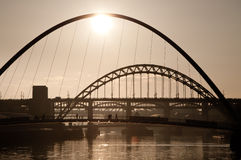 Il millennio ed i ponti di Tyne. Newcastle sopra Tyne. Fotografia Stock Libera da Diritti