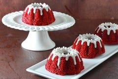 Il mini bundt rosso del velluto agglutina sul piatto bianco su fondo grigio immagini stock