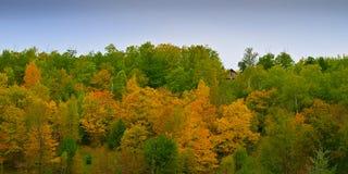 Il Minnesota Autumn Colorful Forest con la casa sulla collina fra gli alberi fotografia stock libera da diritti