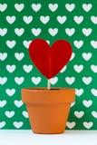 Il mio amore per voi sta sviluppandosi, verde Fotografia Stock