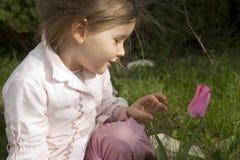 Il mio fiore bello Fotografia Stock