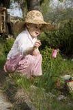 Il mio fiore bello Immagine Stock