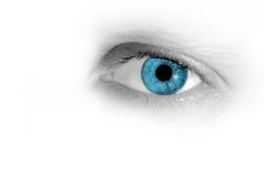 Il mio occhio fotografie stock libere da diritti