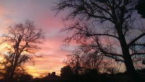 Il mio tramonto Fotografie Stock
