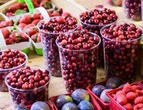 Il mirtillo rosso ricco antiossidante sano dei mirtilli rossi rossi fruttifica in abbondanza fotografia stock libera da diritti