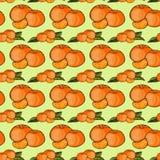 Il modello dei frutti del mandarino Fotografia Stock