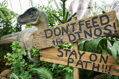 Il modello del dinosauro in conservatorio Fotografie Stock
