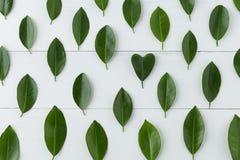 Il modello del limone va con forma del cuore sulla tavola bianca Fotografia Stock Libera da Diritti