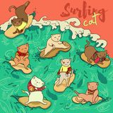 Il modello del surfista del gatto è sorto illustrazione vettoriale