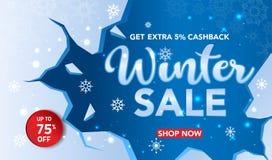 Il modello dell'insegna di vendita dell'inverno con neve si sfalda, cocci del ghiaccio per la vendita di compera Progettazione de fotografia stock