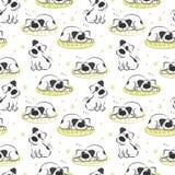 Il modello di sonno sul cane di bianco del cuscino Immagine Stock