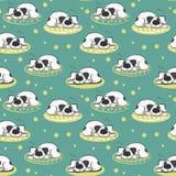 Il modello di sonno sul cane di bianco del cuscino Immagini Stock