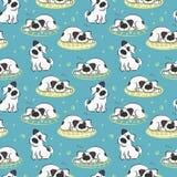 Il modello di sonno sul cane di bianco del cuscino Immagine Stock Libera da Diritti