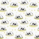 Il modello di sonno sul cane di bianco del cuscino Immagini Stock Libere da Diritti
