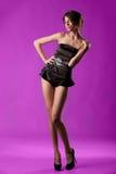 Il modello elegante e sexy Fotografia Stock Libera da Diritti