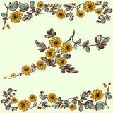 Il modello floreale, fiorisce gli elementi decorativi Fotografia Stock Libera da Diritti
