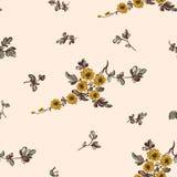 Il modello floreale senza cuciture, fiorisce decorativo Immagine Stock