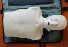 Il modello formativo di emergenza è attrezzatura per la formazione del CPR Fotografia Stock Libera da Diritti