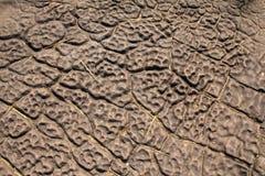 Il modello originale del pavimento della roccia immagine stock libera da diritti