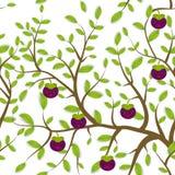 Il modello senza cuciture Brown si ramifica con le foglie verdi, mangostano fruttifica museruola divertente di Kawaii con le guan Fotografia Stock Libera da Diritti
