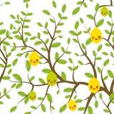 Il modello senza cuciture Brown si ramifica con le foglie verdi, museruola divertente di Kawaii di frutti della calce del limone  Fotografia Stock Libera da Diritti