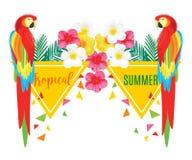 Il modello senza cuciture con il pappagallo e l'ananas, Vector l'illustrazione geometrica Immagini Stock
