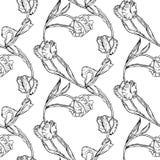 Il modello senza cuciture con la mano che disegna i tulipani in bianco e nero fiorisce Immagini Stock