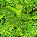 Il modello senza cuciture con le foglie tropicali esotiche vector l'illustrazione Immagini Stock