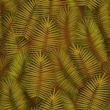 Il modello senza cuciture dell'estate con le foglie di palma tropicali realistiche progetta Contesto esotico della giungla Immagine Stock