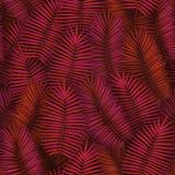 Il modello senza cuciture dell'estate con le foglie di palma tropicali realistiche progetta Contesto esotico della giungla Fotografia Stock