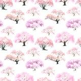 Il modello senza cuciture di un giardino giapponese di fioritura della ciliegia ha dipinto la i Fotografie Stock