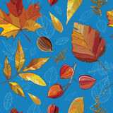 Il modello senza cuciture di vettore con l'insieme di autunno va, dadi, albero Fotografie Stock