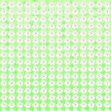 Il modello senza cuciture floreale bianco fiorisce il fondo di struttura Immagine Stock
