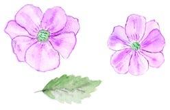 Il modello senza cuciture floreale dell'acquerello con i fiori astratti rosa è Fotografia Stock Libera da Diritti