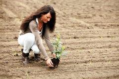 Il modello sta facendo il giardinaggio per l'ambiente Immagini Stock