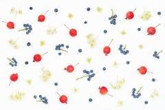 Il modello stagionale delle bacche, ortensia fiorisce, mini mele Fotografie Stock
