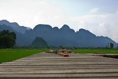 Il modo al giacimento del riso Fotografie Stock Libere da Diritti