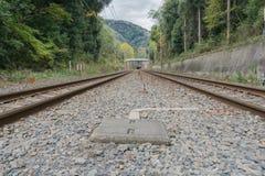 Il modo della ferrovia Fotografie Stock Libere da Diritti
