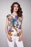 Il modo di bellezza copre il modello casuale della donna della raccolta castana Fotografia Stock