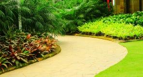 Il modo in giardino Fotografia Stock