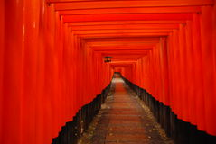 Il modo rosso di Torii Fotografie Stock Libere da Diritti